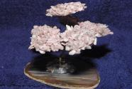 Gem Tree Strawberry Quartz Agate on plate