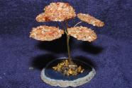 Gem Tree Agate Carnelian on plate