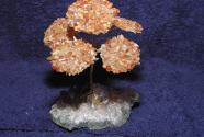 Gem Tree Carnelian plate on Amethyst