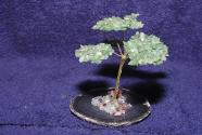 Gem Tree Agate Aventurine on plate
